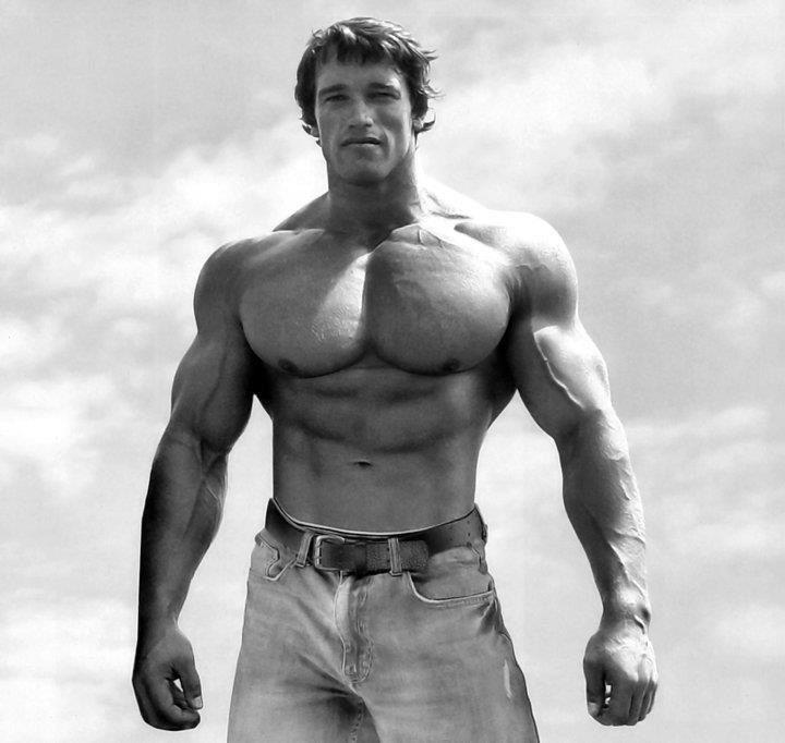 The Arnold Chest Workout: Arnold's Best Chest Exercises!
