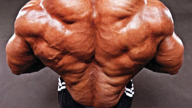 hardcore back workout