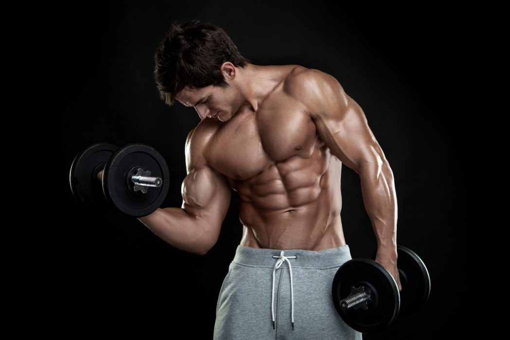 muscle building supplements free