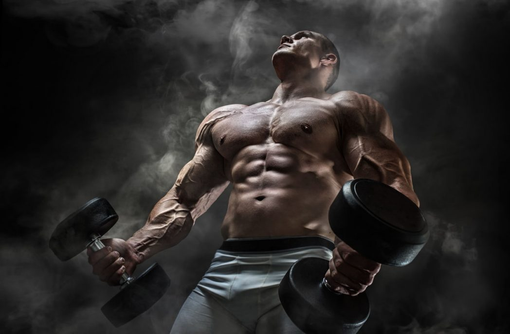 muscle building supplements weights